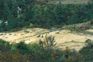 Ghalegaun Trek Harvest Nepal