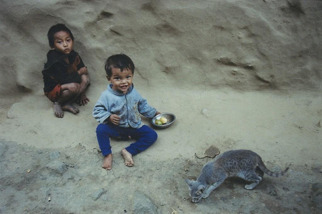 Children Cat Kanchenjunga Base Camp Trek Nepal Trekking Hike Hiking Himalayas