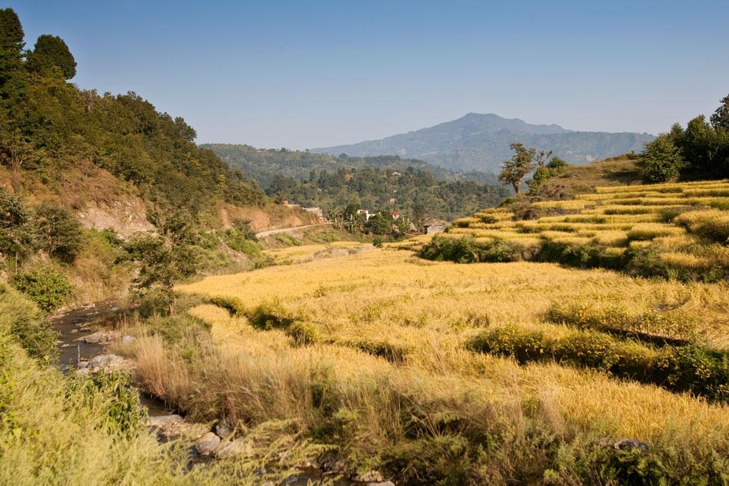 Rara Lake Trek Trekking Hike Hiking Nepal
