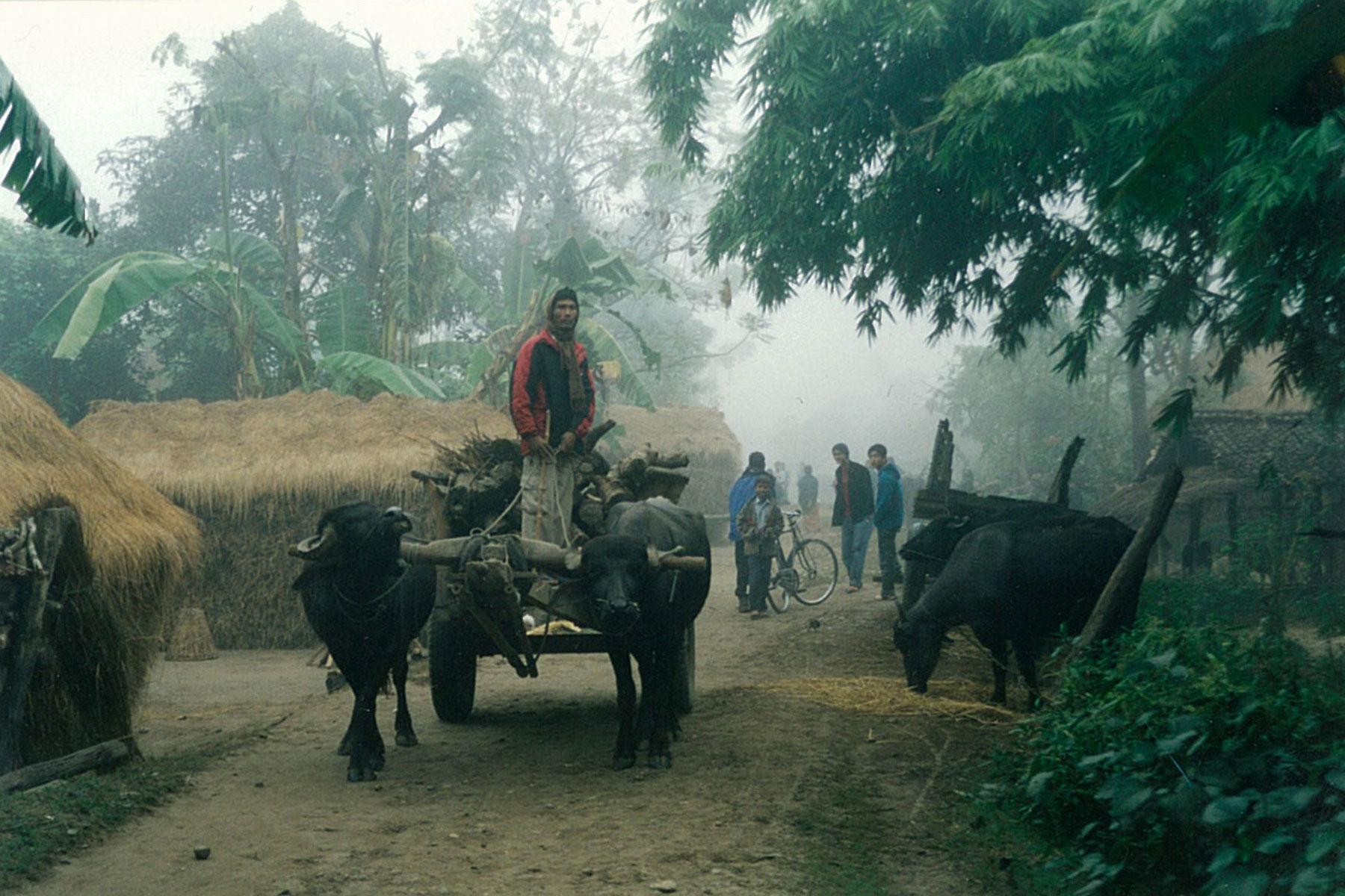 Locals Villagers Chitwan Park Nepal Safari