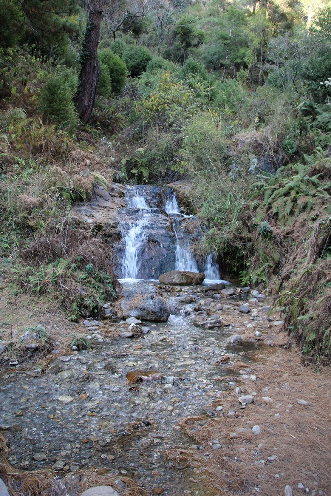 Ghorepani Poon Hill Trek trekking hike hiking nepal forest stream
