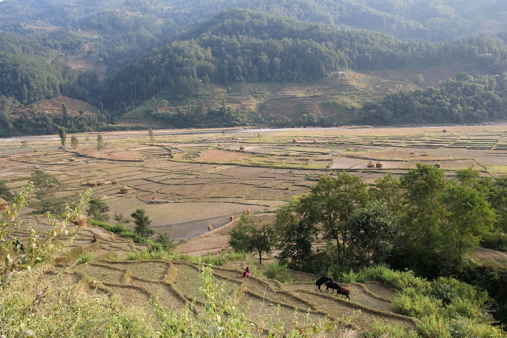 Farmland Panch Pokhari Trek Trekking Hike Hiking Nepal
