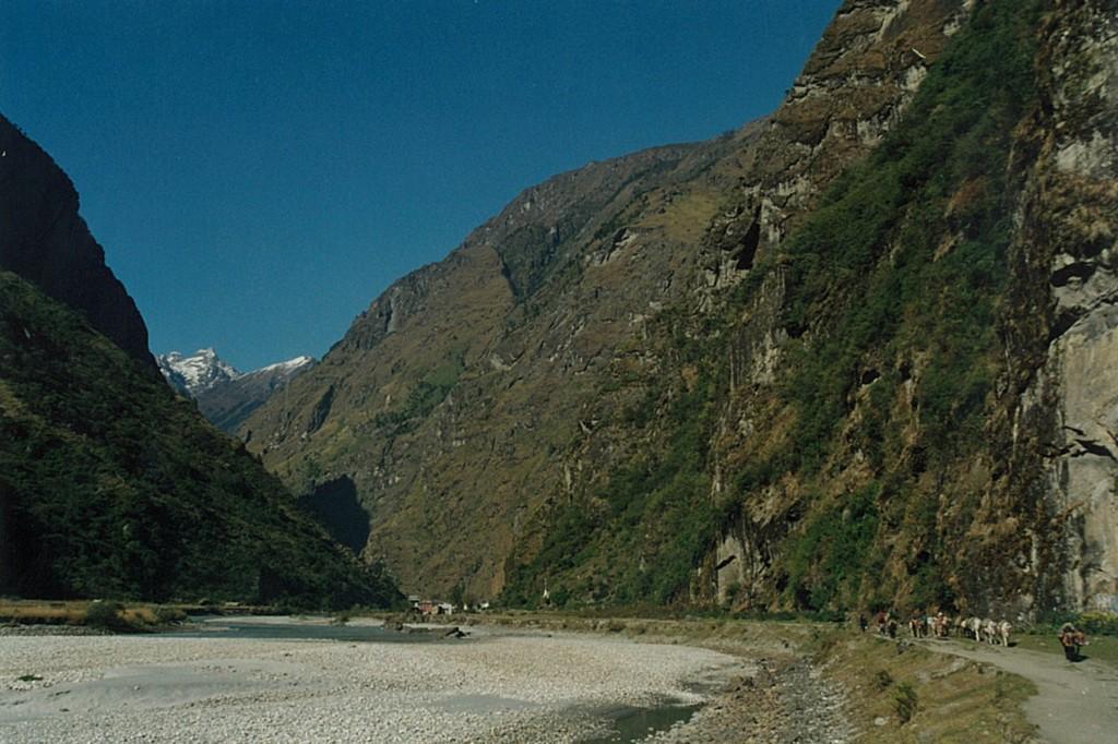 Ponies Mules Manaslu Annapurna Circuit Trek Nepal Trekking Hike Hiking Himalayas