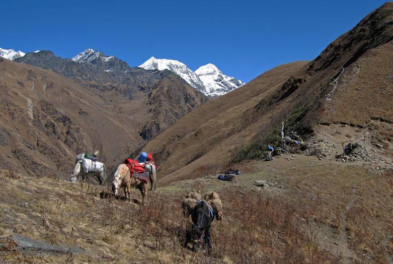 Mauri Lagna Himalayan Pass Lower Inner Dolpo Trek Nepal Trekking Hike Hiking Himalayas