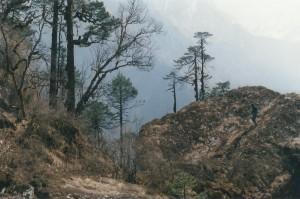 Trekker Helambu Valley Trek trekking hike hiking nepal