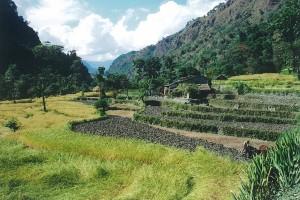 Ploughman Helambu Valley Trek trekking hike hiking nepal