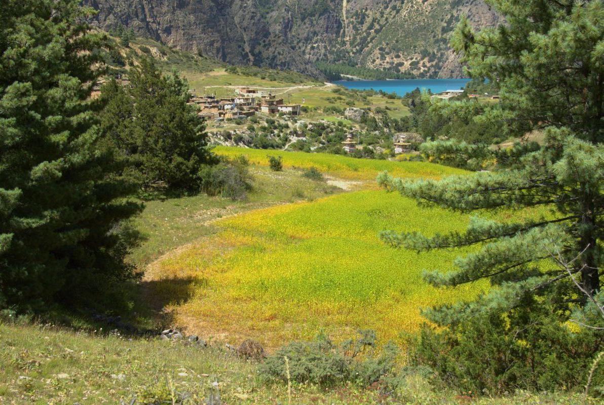 Ringmo Upper Dolpo Trek Nepal Trekking Hike Hiking Himalayas
