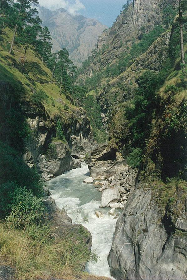 Mountain Stream Rara Lake Trek Trekking Hike Hiking Nepal