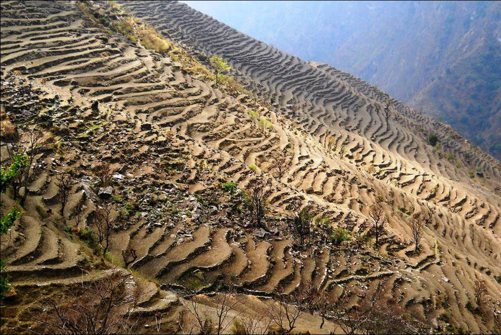 Terracing Panch Pokhari Trek Trekking Hike Hiking Nepal