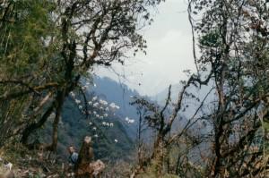 Tamang Heritage Trail Trek trekking hike hiking nepal