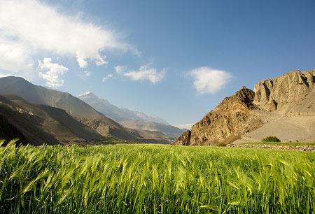 Oasis Agriculture Upper Mustang Trek Trekking Hike Hiking Nepal